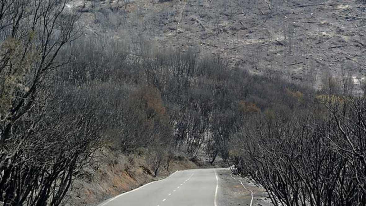 El incendio de la Gomera sigue sin control e imposible de estabilizar en las próximas 24 horas