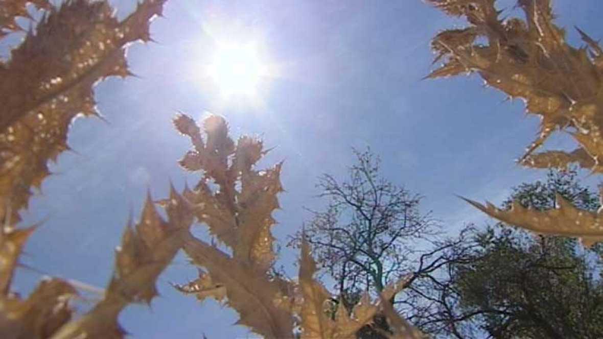 Temperaturas significativamente altas en la Península y Baleares