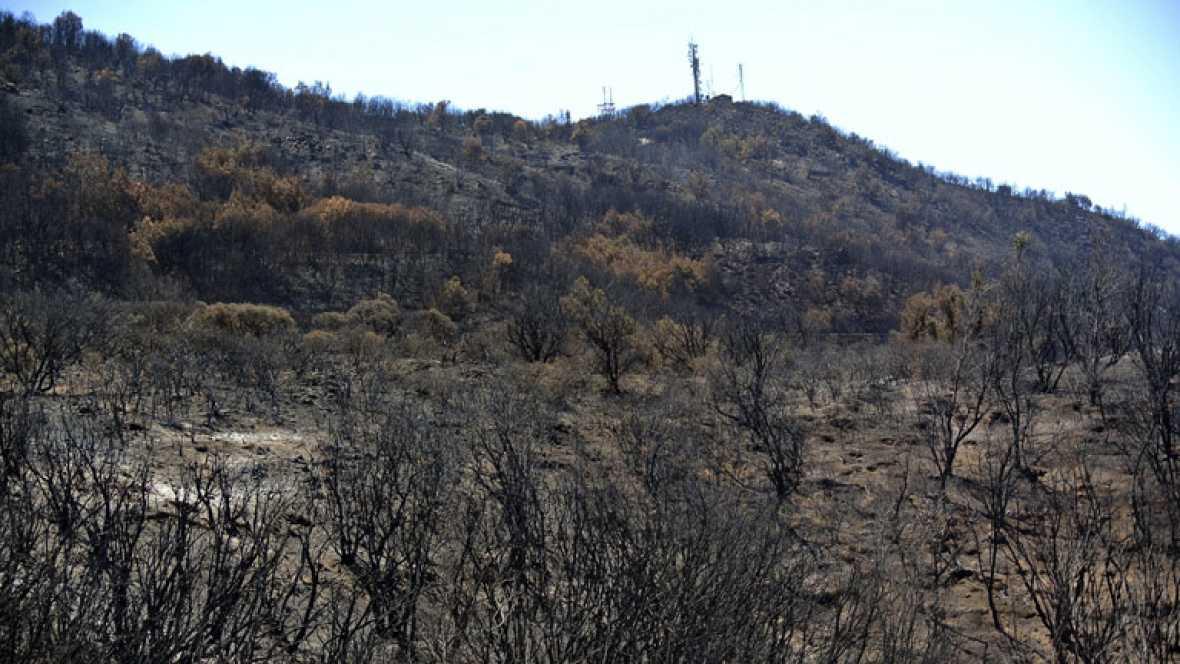 Continúa activo bajo tierra el incendio de La Gomera