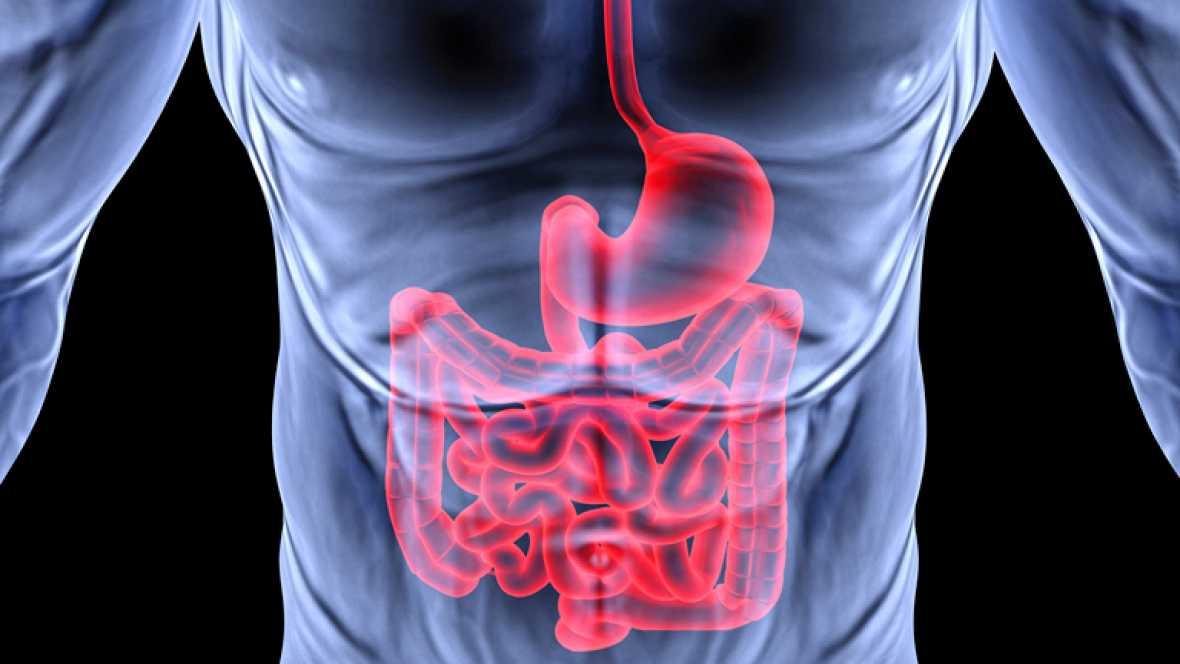Saber vivir - Aparato digestivo - Ver ahora