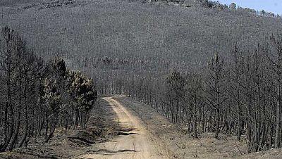 La Junta de Castilla y León reduce a nivel uno el incendio forestal de León
