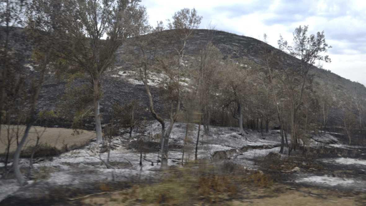 Incendio en la zona del Moncayo