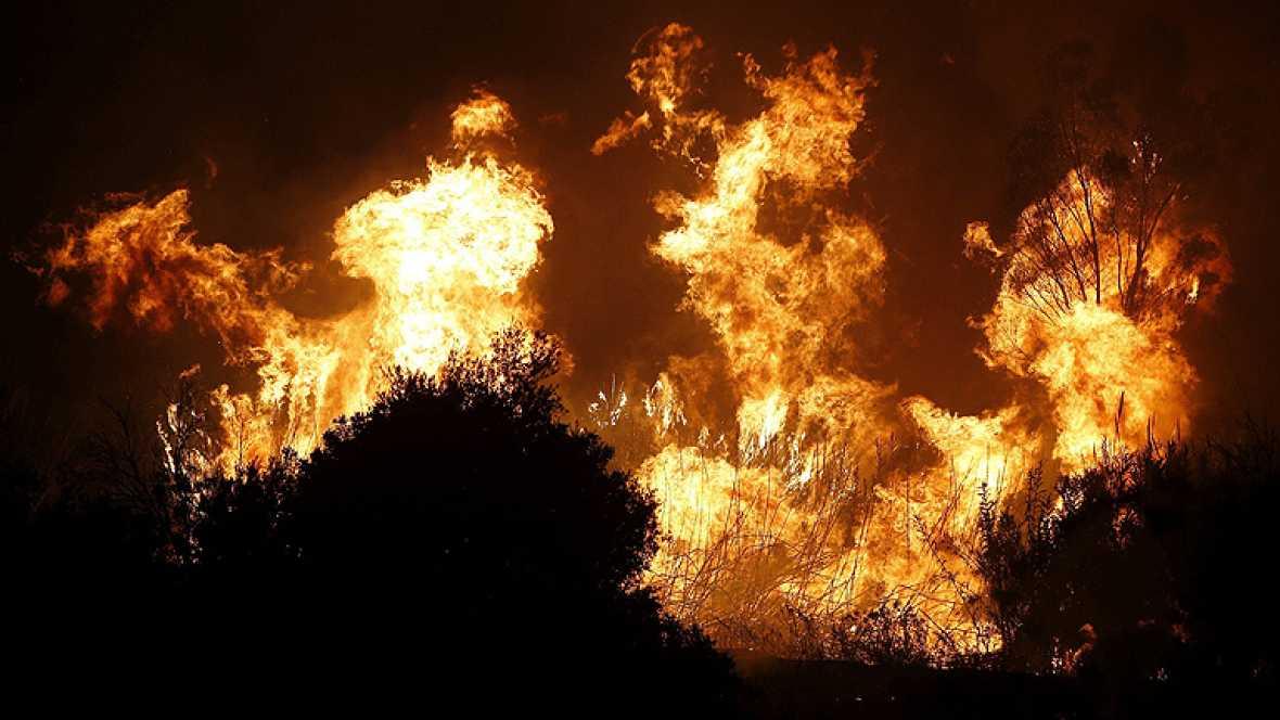 Los incendios forestales queman 165.000 hectáreas