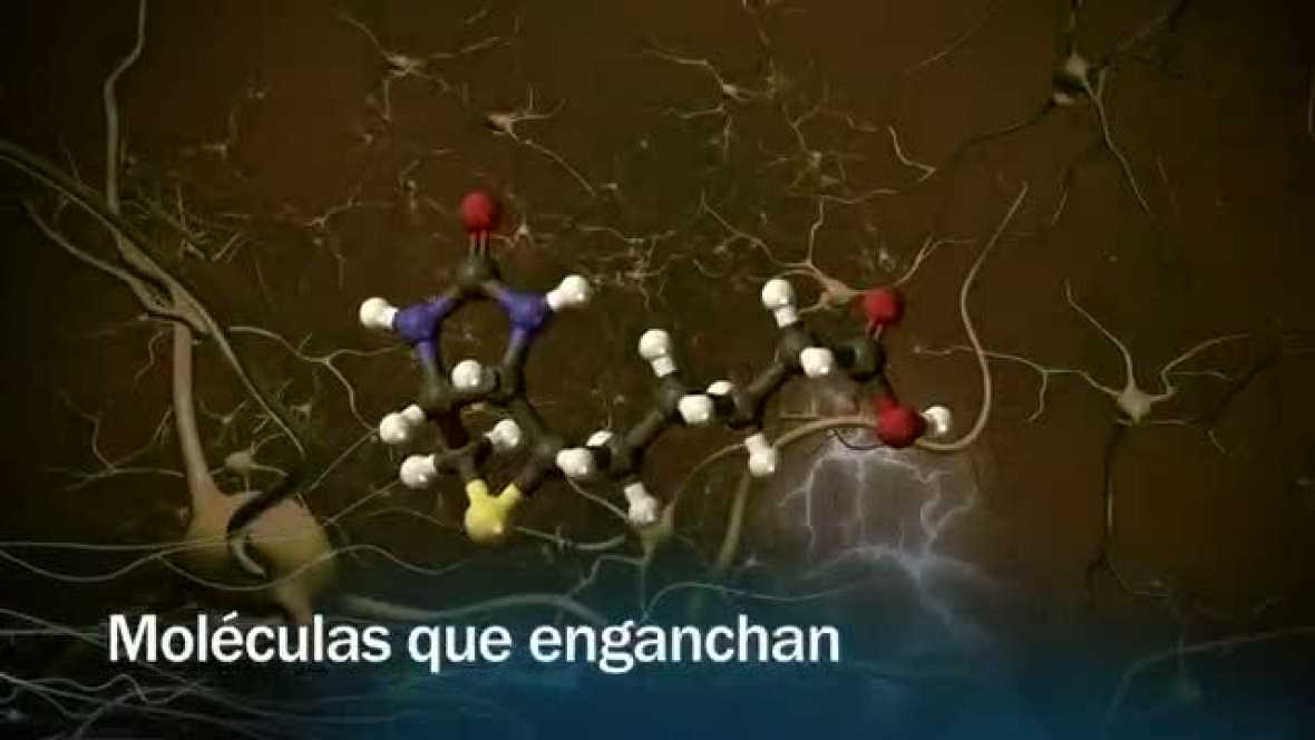Redes - Moléculas que enganchan - avance
