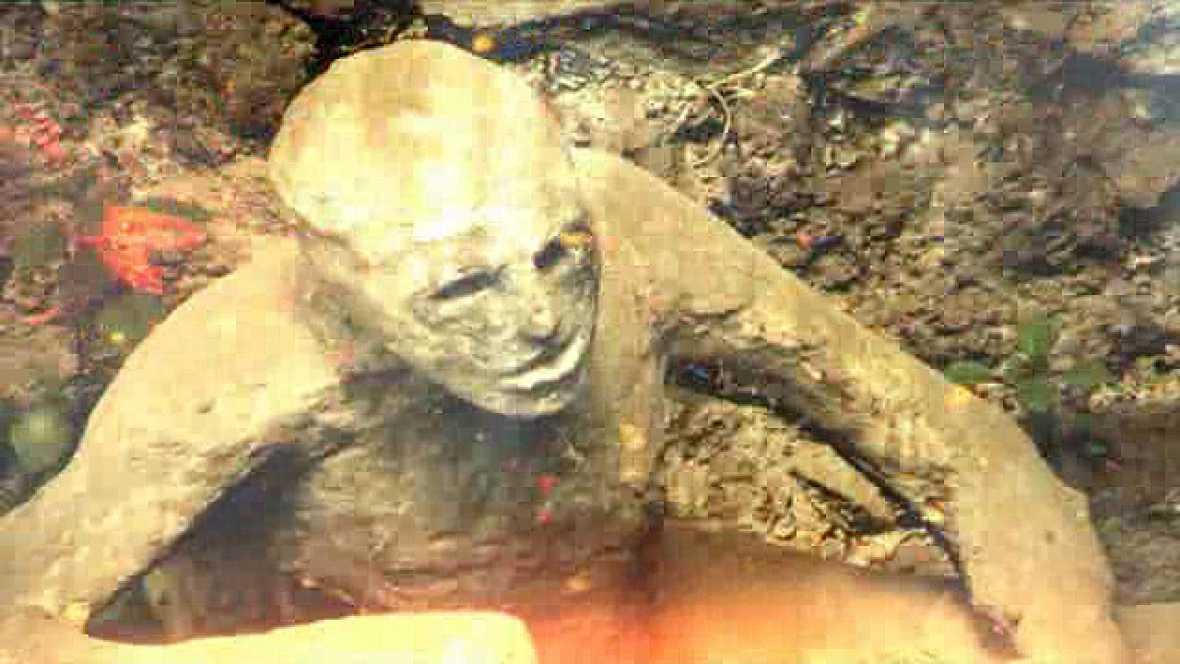 Pompeya, catástrofe bajo el Vesubio.