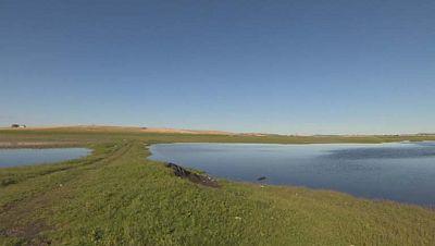 El parque nacional de las Tablas de Daimiel amplia su extensión