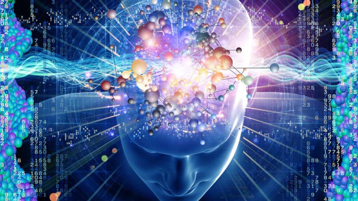 Redes - Estimula tu cerebro para vivir más y mejor - ver ahora