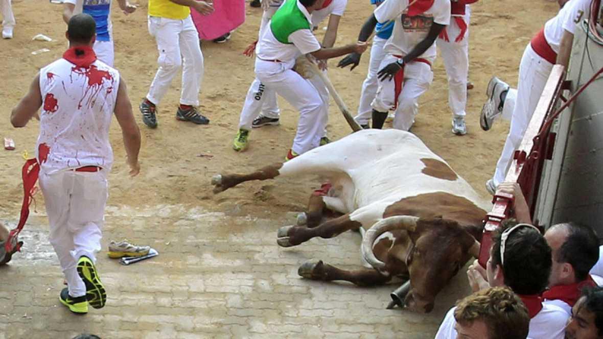 Muere un cabestro tras recibir un fuerte golpe en la plaza en el tercer encierro de San Fermín 2013