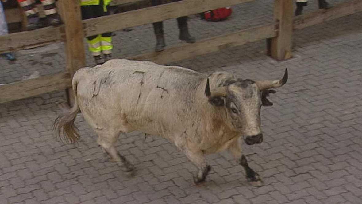 Un toro descolgado protagoniza el quinto encierro de San Fermín 2013 de los Torrestrella