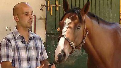 Nuzhoh Canarias, caballo cien por cien español, dio la sorpresa en la carrera de La Teste, en Burdeos, donde se impuso y dejó vacías las arcas del hipódromo, ya que por cada euro apostado por él se devolvían 14.