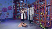 Mes de la Ciencia - La resistencia de los huevos
