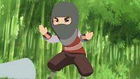 Mini mini ninja