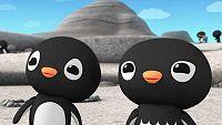 Los pingüinos Adelaida