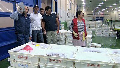 España a ras de cielo - La subasta del pescado