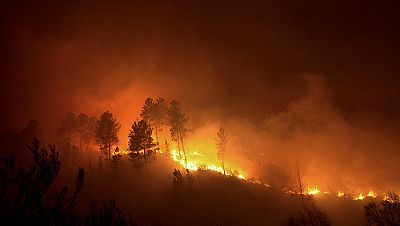 Un incendio en Ourense quema 200 hectáreas del Parque Natural de O Xurés