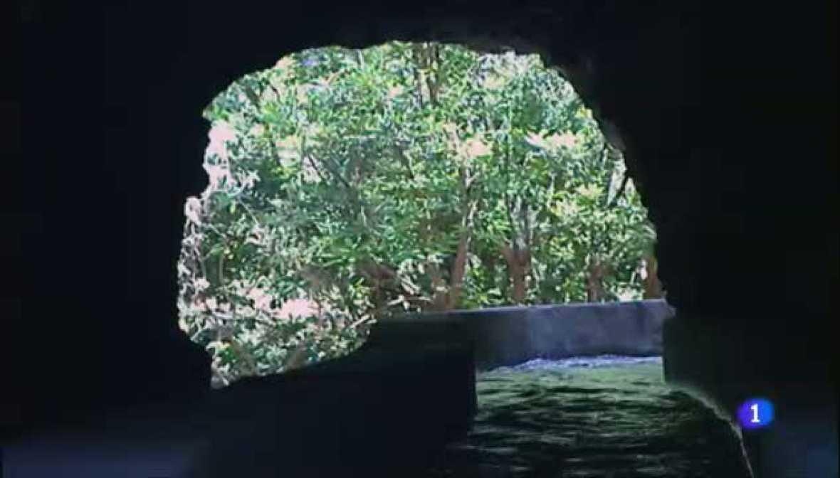 Aulaga - Nacientes de Marcos y Cordero - La Palma