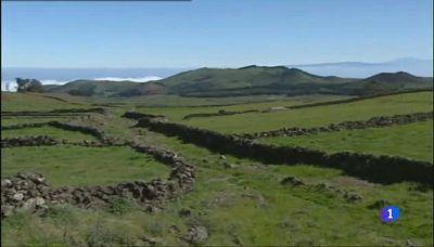 Aulaga - Camino de la Virgen - El Hierro