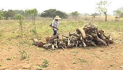 La Ley de Víctimas y Restitución de Tierras ayuda a los campesinos colombianos