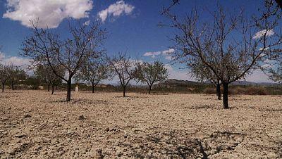La sequía asola el sur de España