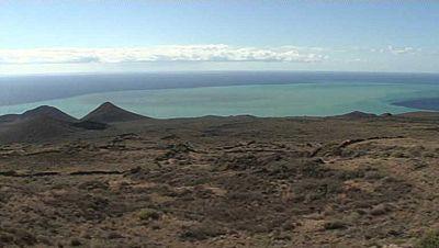 El Hierro recupera su ecosistema después de la erupción del volcán hace tres años
