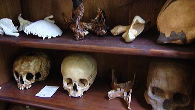 Hallan en Atapuerca la colección más grande de cráneos fósiles de la historia