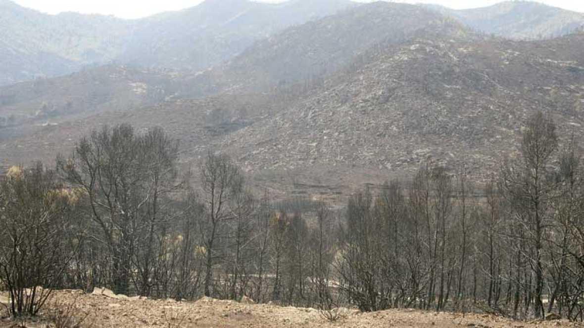 La desertización afecta ya a más del 30% del territorio español, y esto favorece la propagación de los incendios