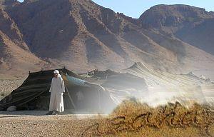 Una fábula del desierto
