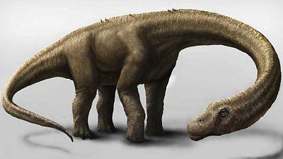Descubren en la Patagonia el dinosaurio terrestre más grande encontrado hasta ahora