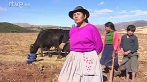 Perú. La cólera del hambre