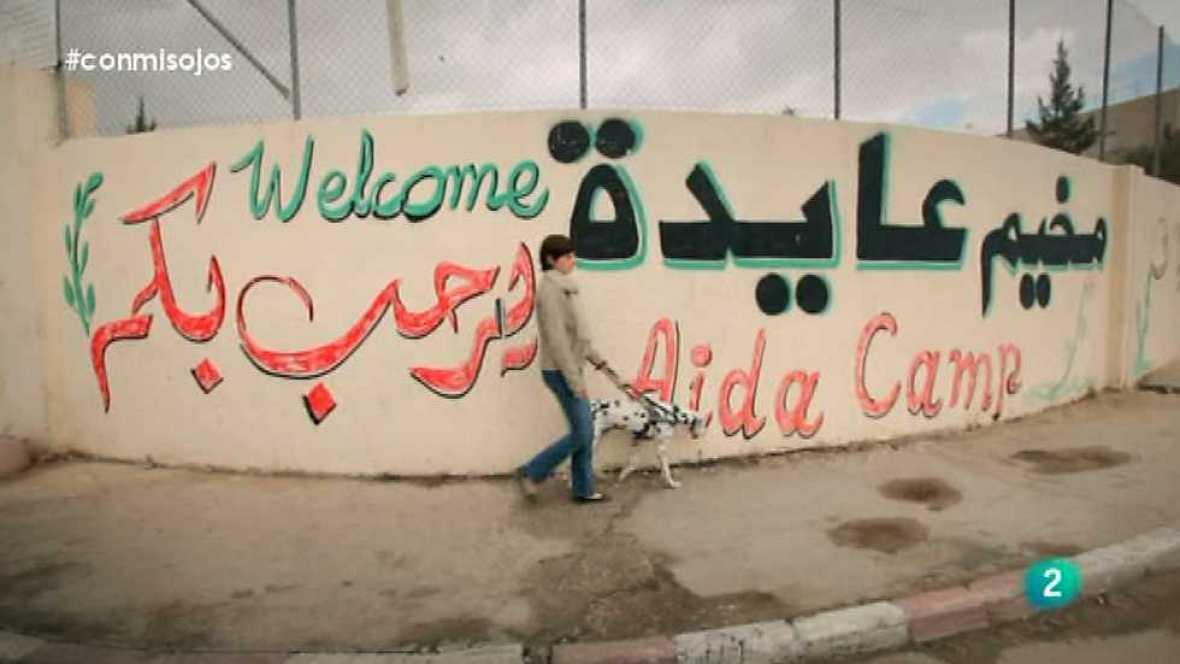 Con mis ojos - Palestina - Ver ahora