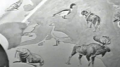 Fauna - El reino del fr�o