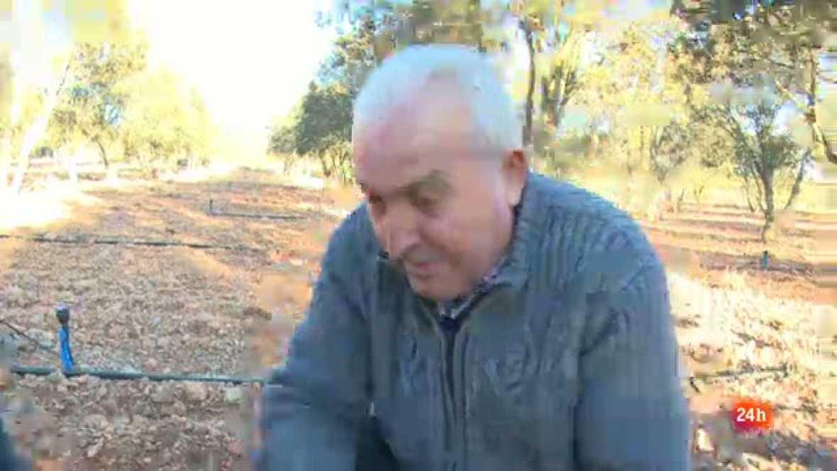 Repor - Teruel huele a trufa - Manuel Doñate
