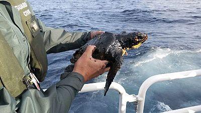 La Fiscalía de Medio Ambiente abre una investigación para determinar si ha habido delito en el hundimiento del barco ruso
