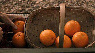 Versi�n espa�ola - Miel de naranjas - ver ahora