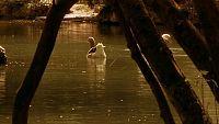 El Canal de Castilla - Capítulo 4 - Ver ahora