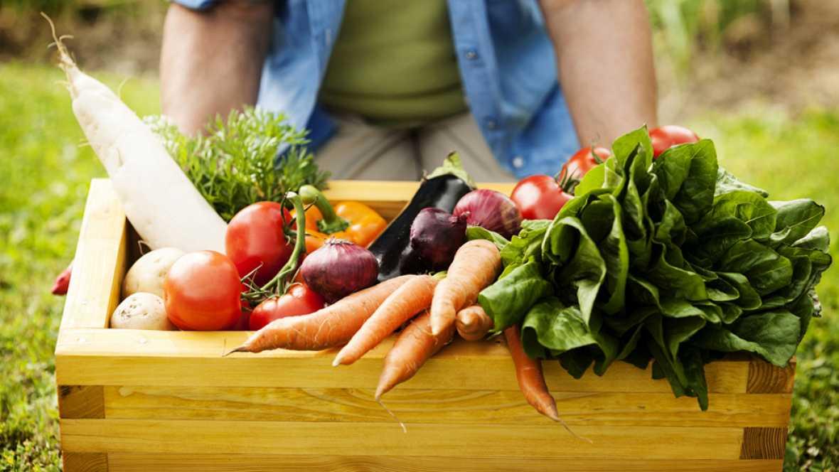 La dieta vegetariana no puede ser una dieta sana y completa