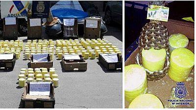 Utilizan piñas frescas para introducir en España 200 kilos de cocaína