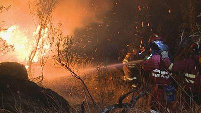 El año pasado se produjeron en España 9.754 incendios forestales