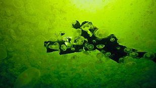 Grandes documentales - Life: Criaturas de las profundidades