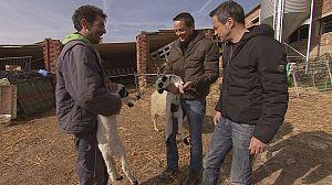 Los gemelos Torres viajan a Burgos