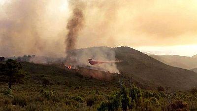 Varios incendios mantienen en alerta a los equipos de extinción en Granada, Jaén, Guadalajara y Castellón