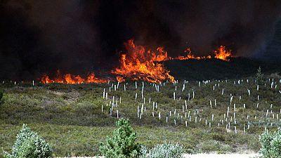 Estabilizado el fuego en Quintana del Castillo (León), que ha quemado más de 2.000 hectáreas