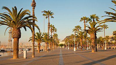 La Barceloneta, en pie de guerra contra los turistas inc�vicos
