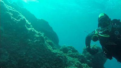 Bajo el mar, tampoco hay barreras