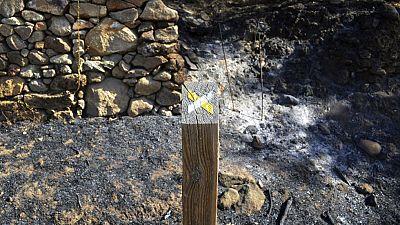 Incendio controlado en Sierra de Gata, PP y ciudadanos piden la declaración de zona catastrófica
