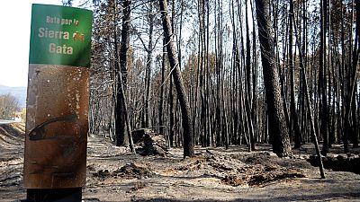 Los vecinos de la Sierra de Gata afectados por el incendio recuperan poco a poco la normalidad
