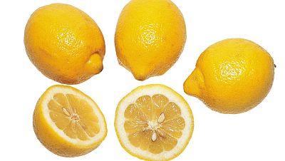 Novales, el pueblo de los limones