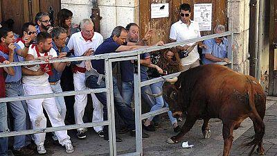 Doce personas han muerto en festejos taurinos en 2015