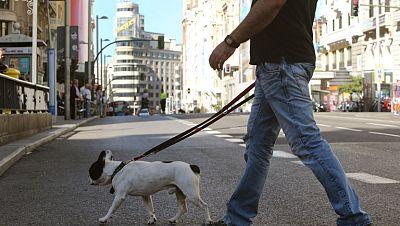 La Gran V�a de Madrid, sin coches