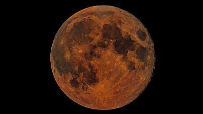 La próxima madrugada del 28 de septiembre, es decir, en la noche del domingo al lunes, astrónomos del proyecto GLORIA van a retransmitir en directo por internet desde Canarias un eclipse de superluna. Se podrá ver en rtve.es/eclipse-luna